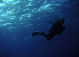Diving off the Coast of Pakistan