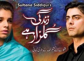 Pakistani Drama's Having an Impact on India