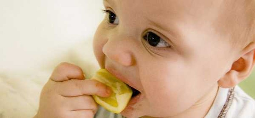 Baby's Diet – Difference between Success and Failure in Life