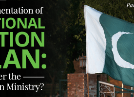 Implementation of NAP: Whither the Foreign Ministry?