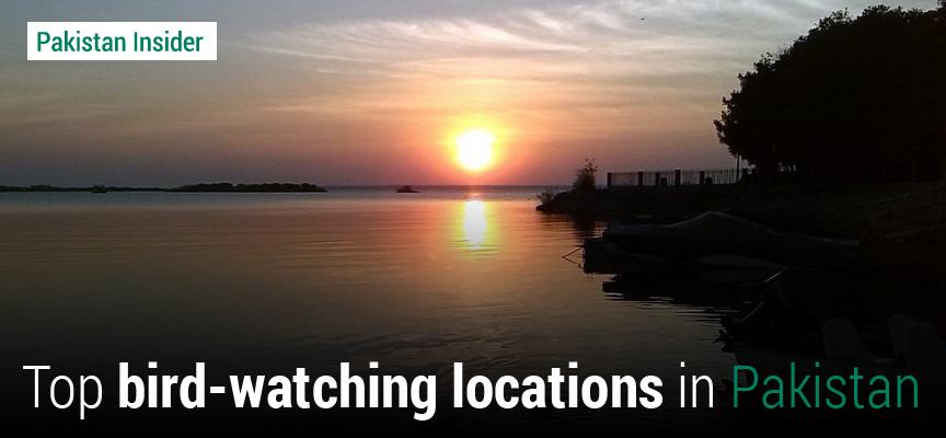 Top Bird Watching Locations in Pakistan