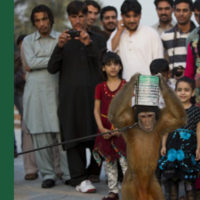 Your Guide to a Fab Pakistani Summer